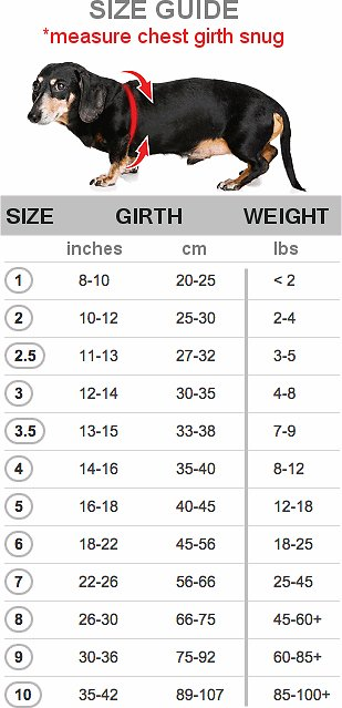 buddy-belt-sizing-chart.jpg