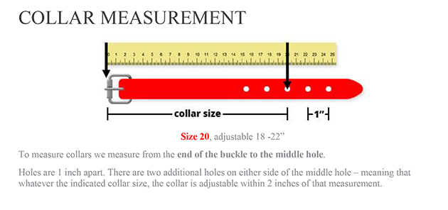 smoochy-collar-measurement-sm-1.jpg