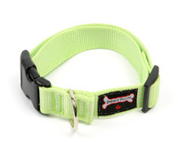 Smoochy Poochy Nylon Collar - Mint