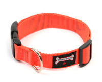 Smoochy Poochy  Nylon Collar - Orange