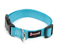 Smoochy Poochy Nylon Collar - Turquoise