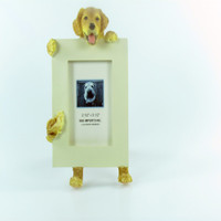 E&S Imports Small Dog Frame - Golden Retriever