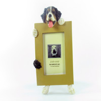 E&S Imports Small Dog Frame - Bernese Mountain