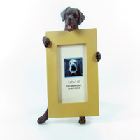 E&S Imports Small Dog Frame - Labrador Black