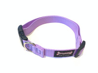 Smoochy Poochy Nylon Collar - Lavender