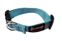 Smoochy Poochy  Nylon Collar Reflective  - Turquoise