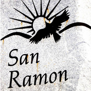 San Ramon Eagle // CA114