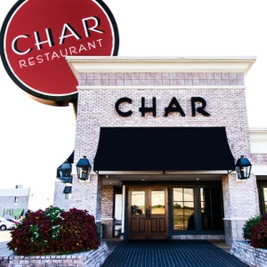 Char // MS033