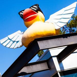 Duck Toys // SA076