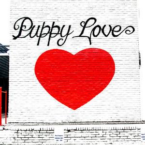 Puppy Love // ATX171