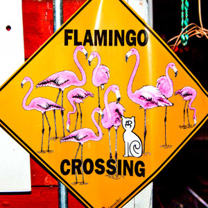 Flamingo Crossing // LA020