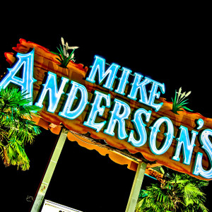 Mike Anderson's // LA029