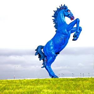 Mustang // DEN005