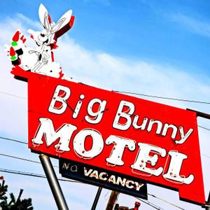 Big Bunny // DEN051