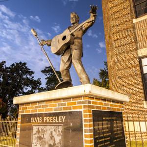 Elvis // MS073