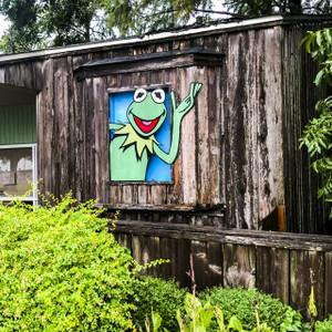 Kermit // MS077