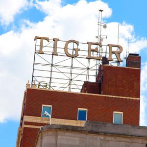 Tiger Building // MO135