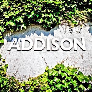 Addison Ivy // DTX099