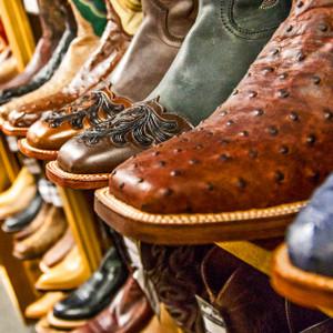 Boots // DTX100