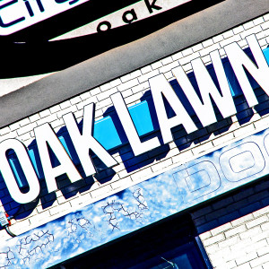 Oak Lawn Blue White // DTX208