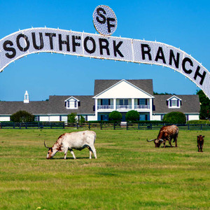 Southfork Ranch // DTX224