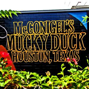 Mucky Duck // HTX020