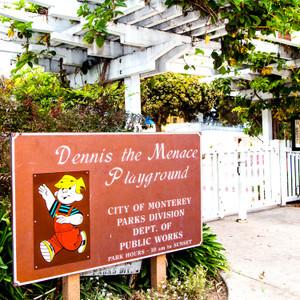 Dennis // CA157