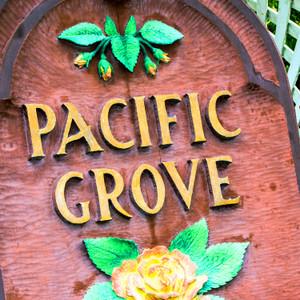 Pacific Grove // CA182