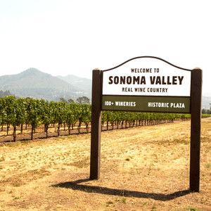 Welcome to Sonoma // CA207