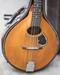Gibson A-Mandolin 1906 close up