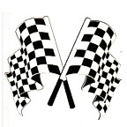 Checkered Flags - Set of 2