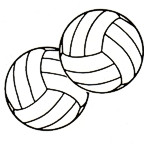 "Volleyball - Pair of 2"" Diameter"