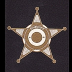 Sheriff Badge in Etched Gold - very high detail!