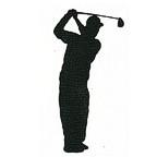 Golfer - Swing