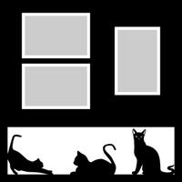 Cats - 12x12 Overlay