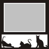 Cats - 6x6 Overlay