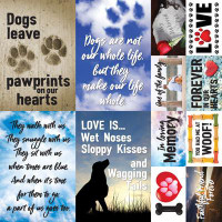 Paw prints on my Heart - 12 x 12 Poster Sticker