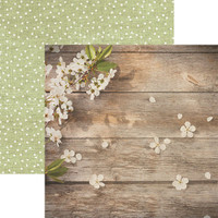 Apple Blossom 12 x 12 Double Sided Scrapbook Paper