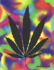 Marijuana Leaf Vinyl Sticker Pyscho Peace