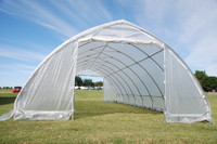 Greenhouse  40'x20' Clear w Pointed Arch - Walk In Nursery Hothouse