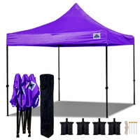 10'x10' D Model Purple - Pop Up Canopy Tent EZ  Instant Shelter w Wheel Bag + Sand Bags