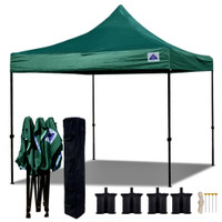 10'x10' D Model Forest Green - Pop Up Canopy Tent EZ  Instant Shelter w Wheel Bag + Sand Bags