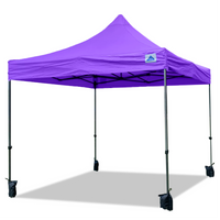 10'x10' D/S Model Purple - Pop Up Canopy Tent EZ  Instant Shelter w Wheel Bag + Sand Bags + 4 Walls
