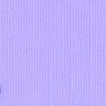 6-620 Wisteria 309021