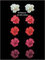 45150 Bridal Rose Red Set