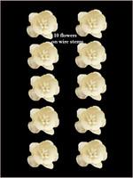 42220 Blossoms Vanilla