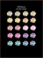 40250  Baby Blossoms Pastels