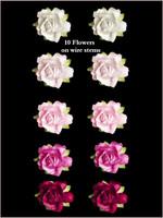 45245 Rose Pink SET