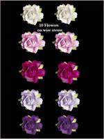 45255 Rose Purple SET