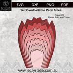 F20 Flower Solid Petals CUT FILE